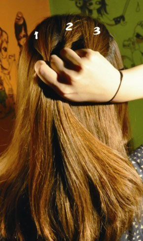 长发盘发的方法